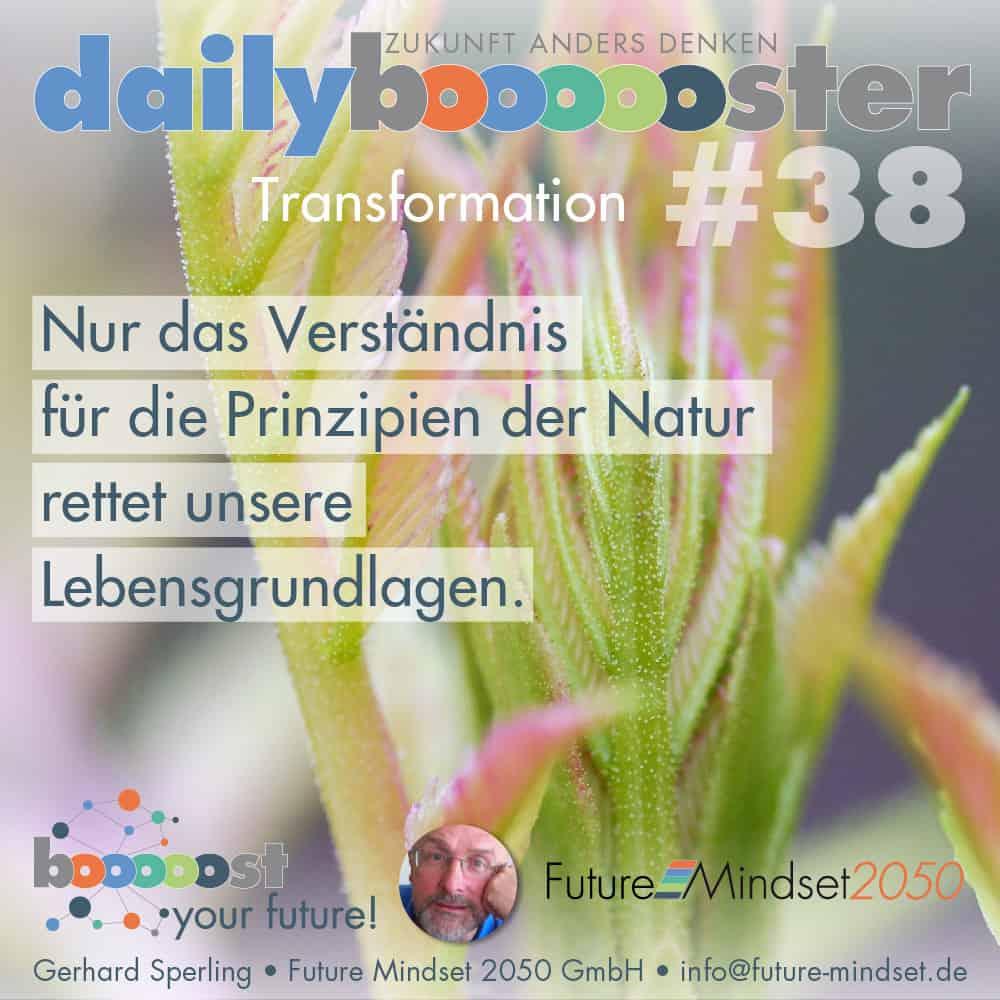 daily boooooster 38