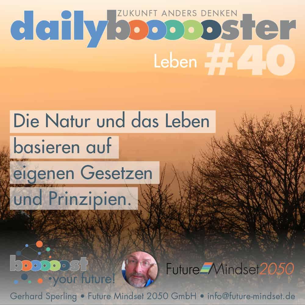 daily boooooster 37 - Potenziale